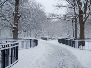 Empty path in park dusted with snow