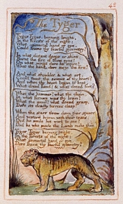 An Illustrated Version of William Blake's Poem, The Tyger
