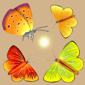 Butterflies surround a glowing ball of energy